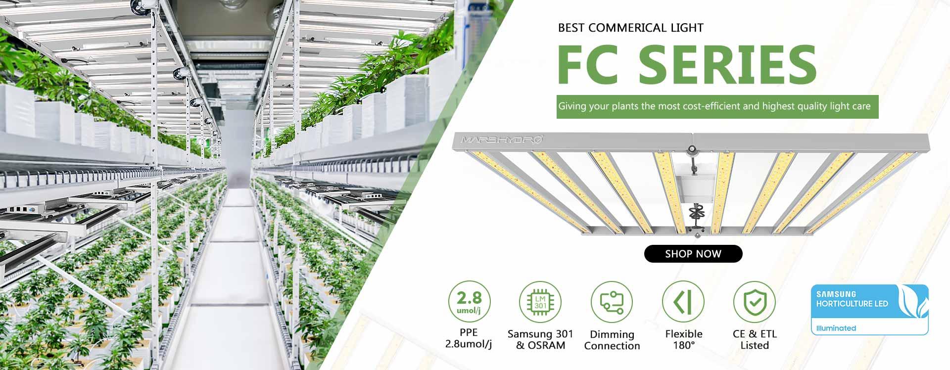 FC-banner_d95ed062-7ffe-4cbe-ad35-e62d847f1104